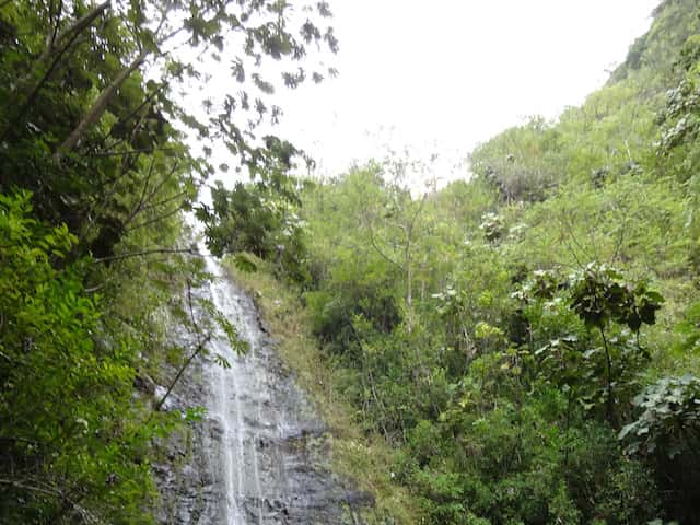 ハワイ旅行前に見ておくべき映画・ドラマ5選
