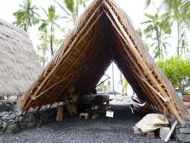 海も買い物も興味がない人向けのハワイの楽しみ方