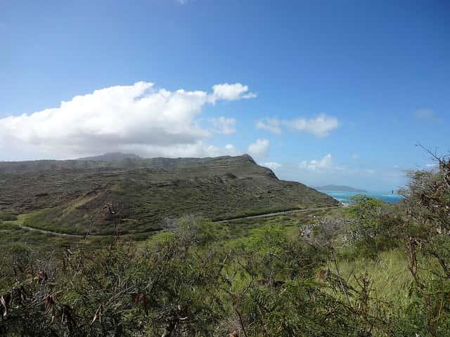 ハワイ旅行をより楽しくするために知っておくと良いこと