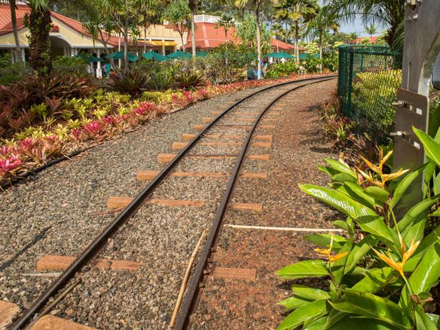 まさかハワイに!?乗り鉄向けのハワイの楽しみ方