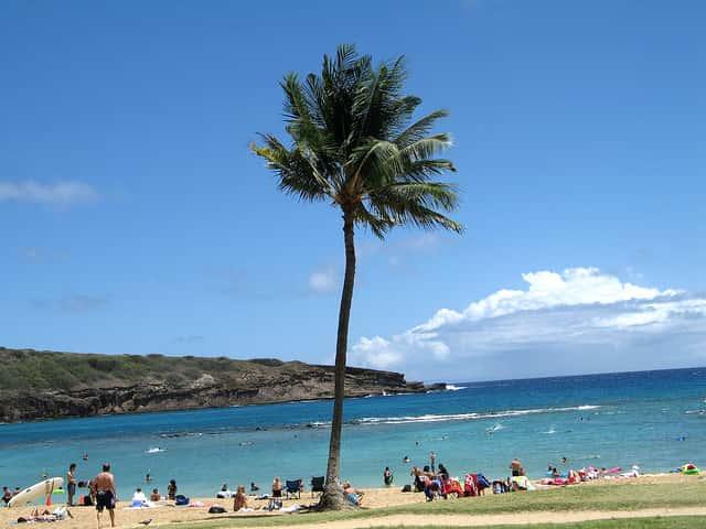 なぜ「ハワイ旅行=オアフ島のワイキキ」前提の情報が多いのか