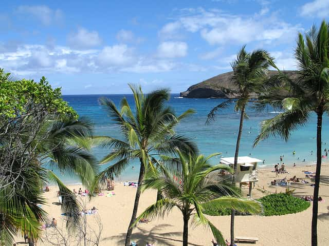 聴くとハワイ旅行へのワクワクが倍増するアルバム
