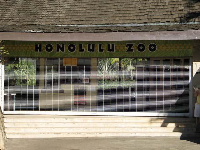 ハワイ到着初日のホテルのチェックイン時間までの過ごし方