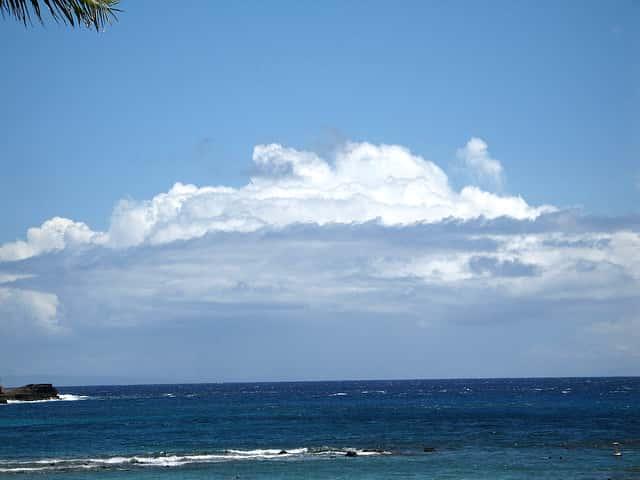 海が怖い人がワイキキでサーフィンデビューをする時に気をつけること