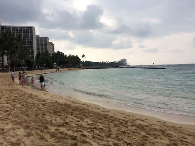 初ハワイの人でも手軽に海で魚を鑑賞できるスポット