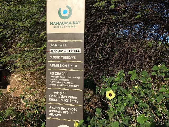 はじめてハナウマ湾を訪れる人が気をつけること