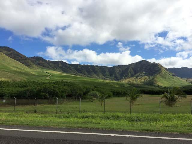 ハワイ旅行にガイドブックを持ち込む必要がなくなった理由