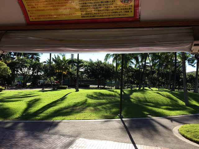 ハワイ旅行のシーズンの選び方の基本