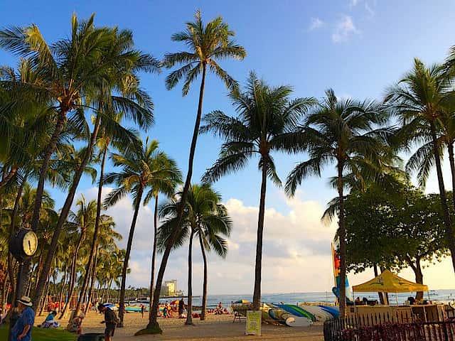 「はじめてのハワイ旅行」から一周年のお礼