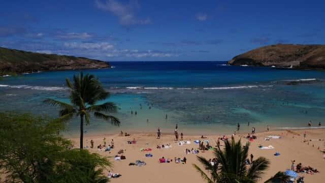 初ハワイの人は必見!女性のハワイ一人旅で気をつけたいこと