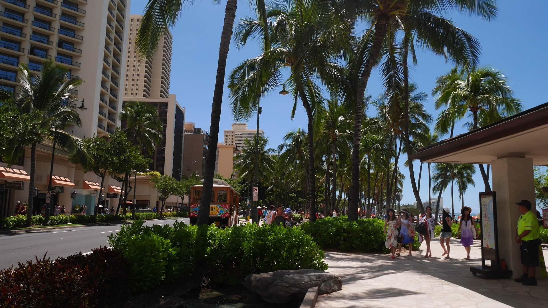 住んでわかった!ハワイの歩道をスムーズに歩けるコツ
