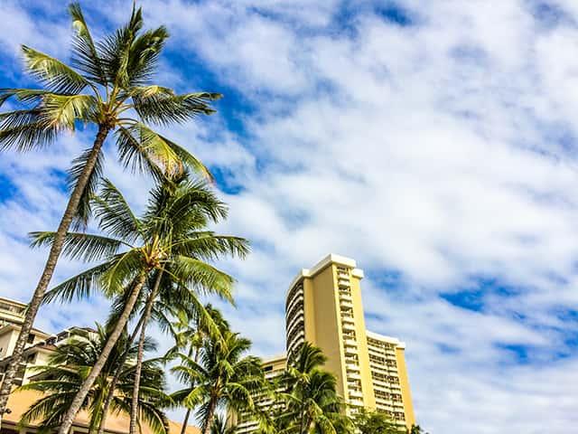 レンタカーでは体験できない、ハワイのオプショナルツアーの魅力