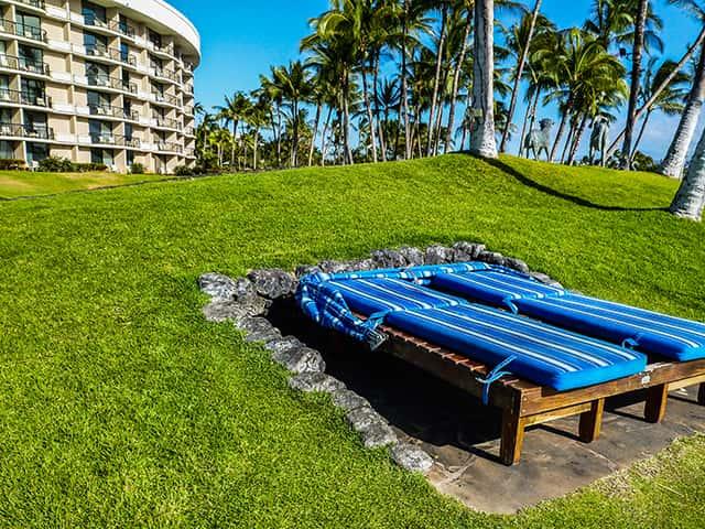 計画時に必見!ハワイの祝日とクラゲの発生時期を同時に確認できるカレンダー