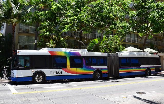女性の一人旅必見!ハワイの公共バスの乗りこなし方