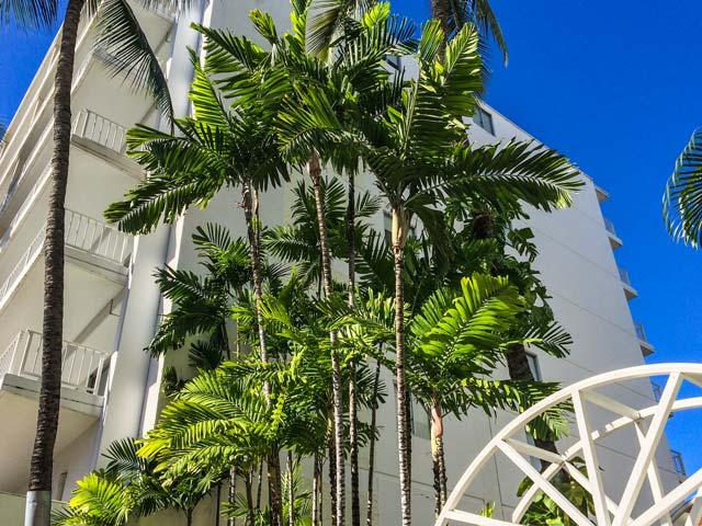 2家族子連れ7人でのハワイの宿泊先の選び方