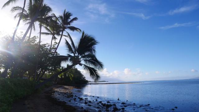 自分にぴったりのハワイの島の選び方