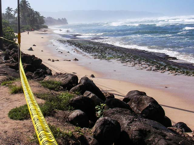 ハワイ旅行中に本当に気をつけるべき天気予報の調べ方