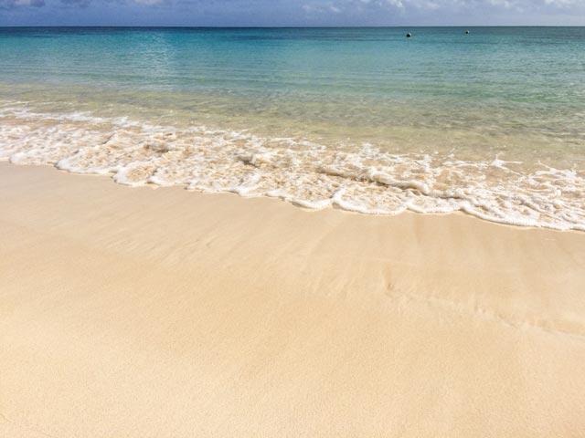 ハワイでリラックスしたい人がオプショナルツアーを選ぶときの注意点
