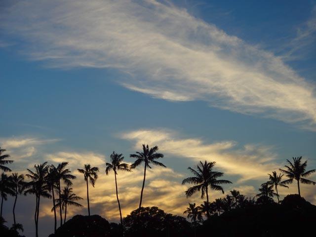 ハワイ旅行中の海での安全のために調べておくべきこと