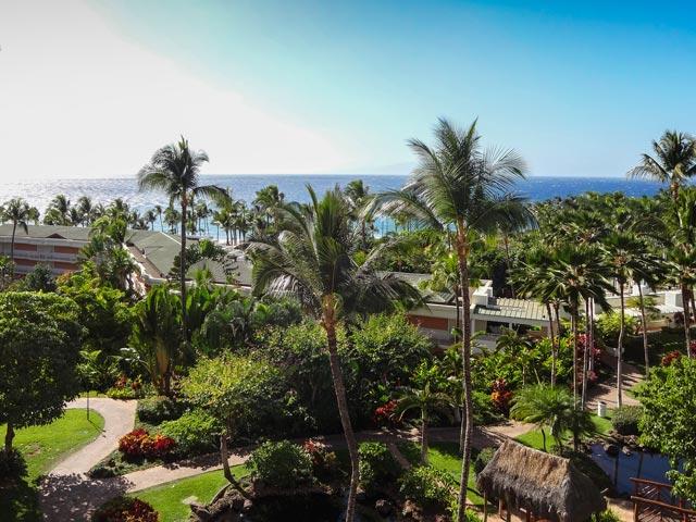 ハワイでクジラを見ながらゴルフを楽しむ方法
