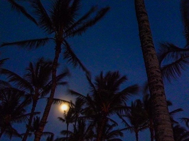 ハワイ旅行での星空ツアーを申し込む前に確認しておくべきこと