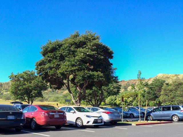 ハワイのレンタカーを予約する際に必ずチェックしておくべき割引