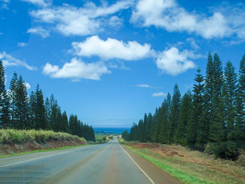 ハレイワに向かうカメハメハハイウェイ沿いの風景