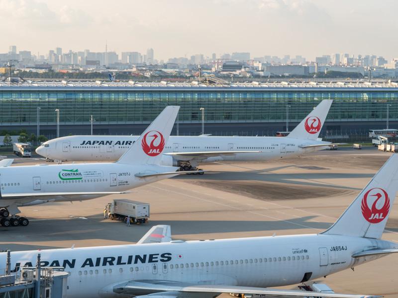 羽田空港国際線のJALの飛行機たち