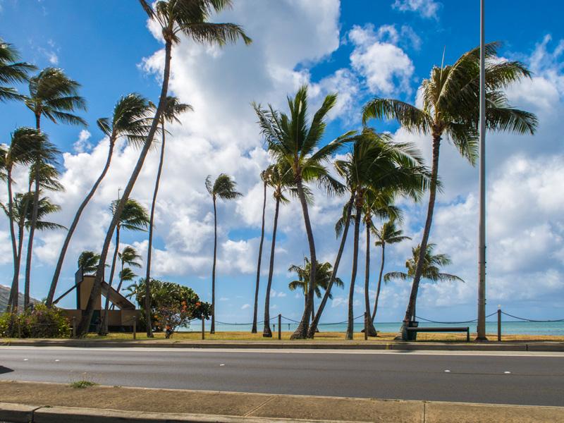 ハワイカイの風景