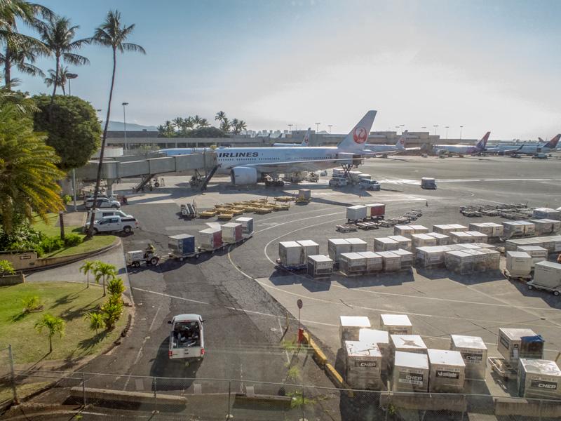 ハワイ旅行の飛行機でトイレ近くの座席を選ぶデメリット