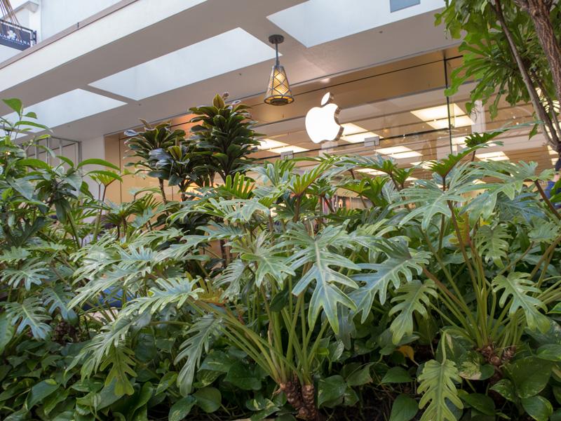 ハワイのApple Storeでは商品価格に税金(GE TAX)がかかるのか