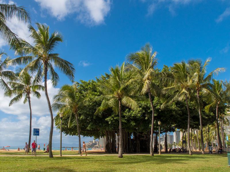 4歳児・0歳児(10ヶ月)とのハワイ旅行を個人旅行にした理由