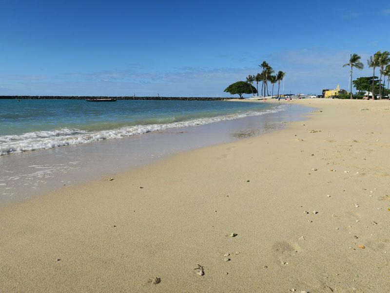 4歳児・0歳児(10ヶ月)とのハワイ旅行にau損保を利用した感想