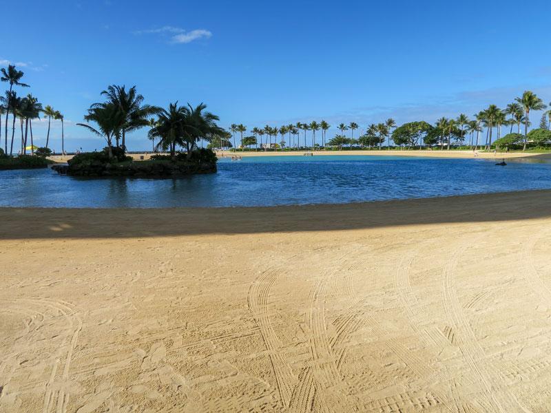 1月のヒルトン・ハワイアン・ビレッジのラグーンで泳がなかった2つの理由