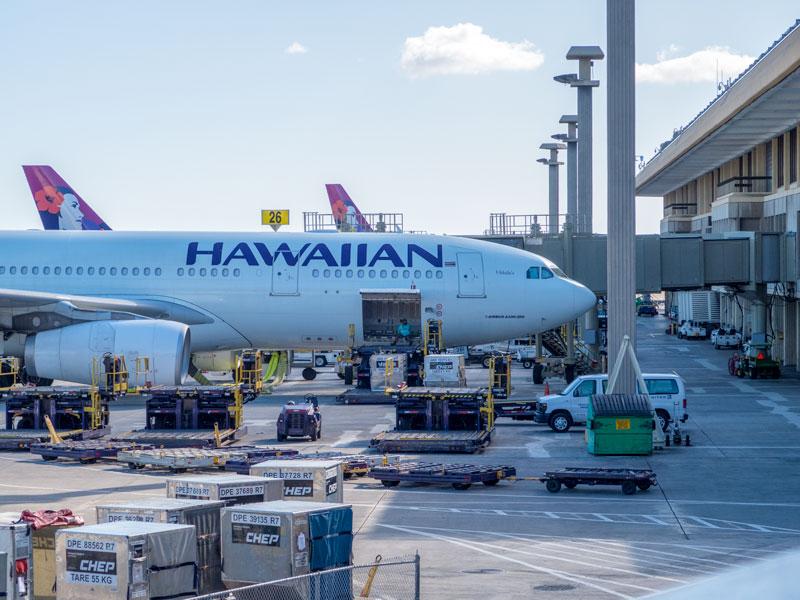 ハワイアン航空の1歳児の膝上手配、親の座席を先に購入しても大丈夫か?