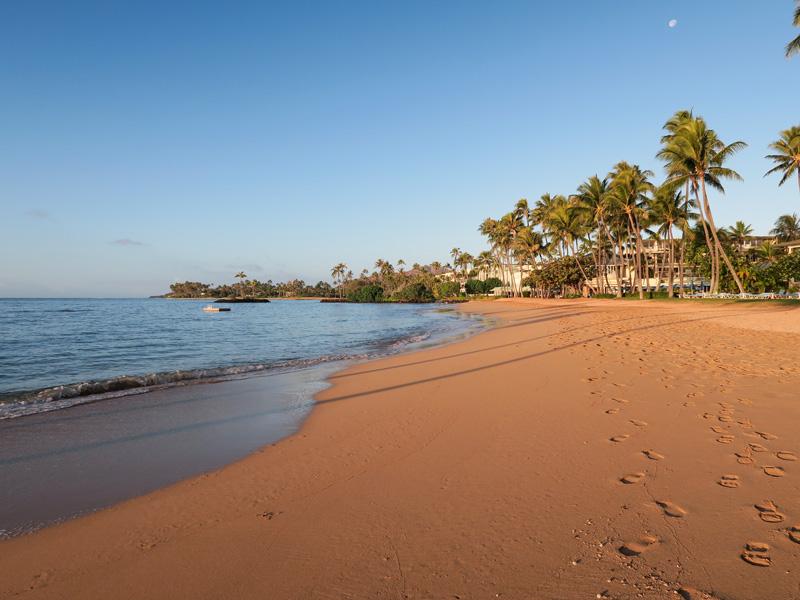 カハラビーチ沿いに浮いている足場まで泳いだ感想
