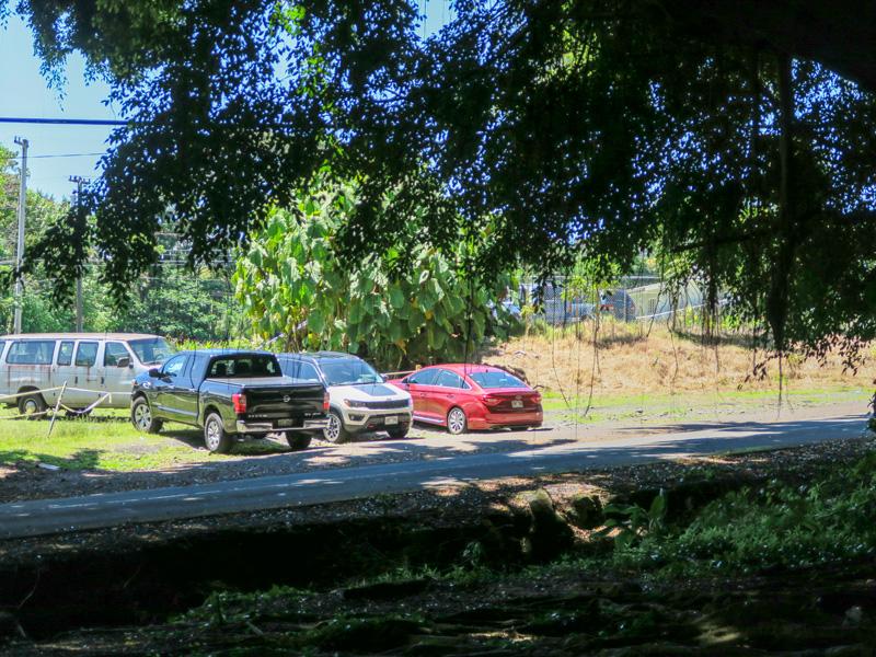ハワイ島、ワイルク・リバー州立公園で近くで見かけた路駐場所の様子