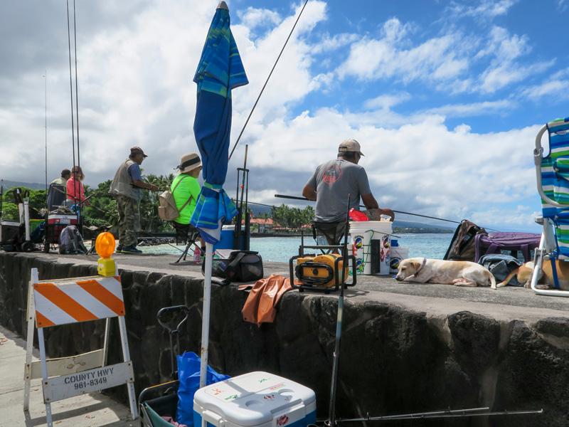カイルアコナの海沿いの道でよく魚が釣れていた場所の例