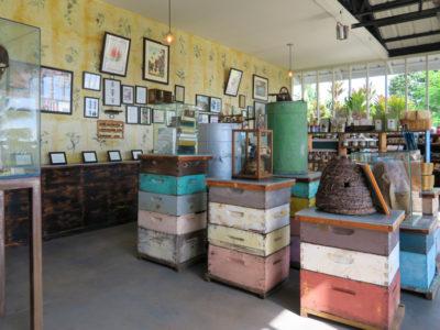 ハワイ島キャプテンクック、ビッグ・アイランド・ビーズのショップの店内
